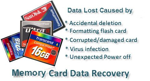 free sd card data recovery software full version
